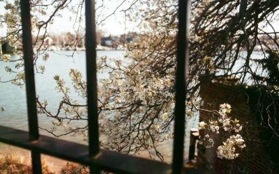 Fumbling with Film in April